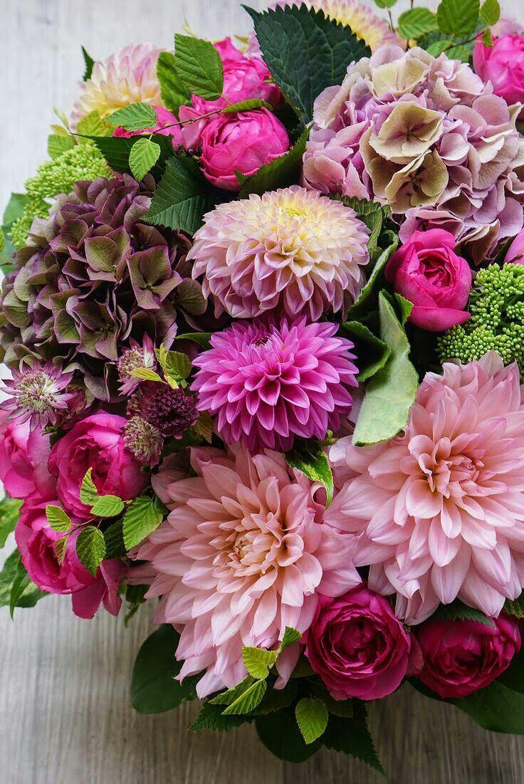 Crisantemos Arranjos De Flores Bouquet Arranjos