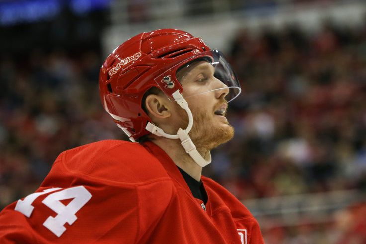 Gustav Nyquist isn't a 30-goal player and that's OK = Gustav Nyquist has been the most divisive player on the Detroit Red Wings roster over the last two seasons. While most can agree on the blemishes (hello, Danny DeKeyser) or the surprise bright spots (we're looking at.....