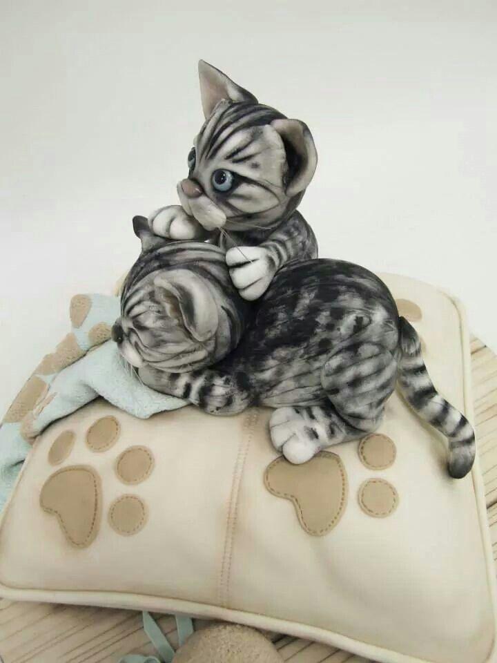 людей картинки котята на торт вас