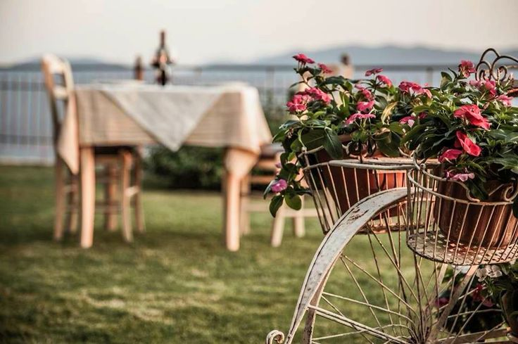 #flowers #bicyclebasket #romantic #Althaia #Hotel #Thermo #Etoloakarnania #Greece http://www.rooms-2-let.com/3076/Althaia_Hotel