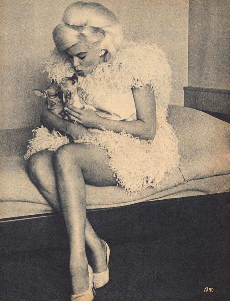 392 best images about jayne mansfield on pinterest for How old was jayne mansfield when she died