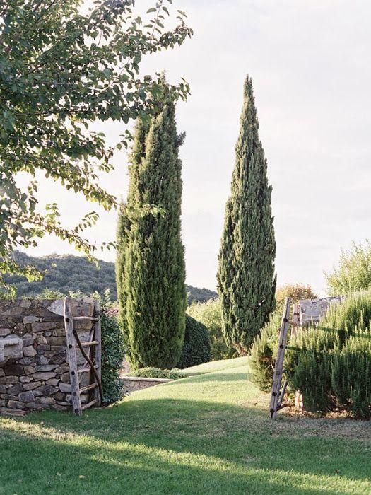 Castello di Vicarello, Cinigiano, Grosseto, Toscana, Italy