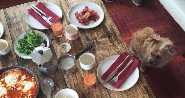 Dog-friendly Restaurants in Cape Town