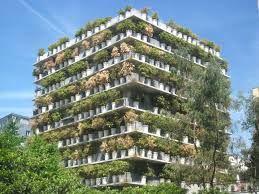 Bilderesultat for tree building