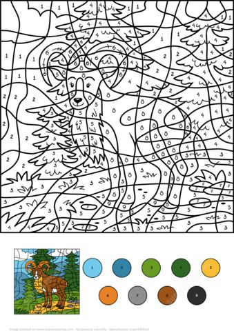 wild goat color by number coloring page from color by number worksheets category select from
