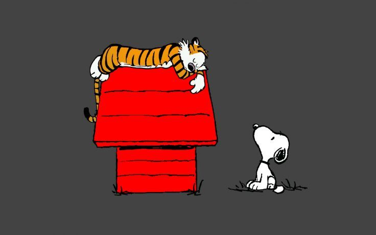 Calvin and Hobbes Snoopy Sleep peanuts tiger wallpaper background