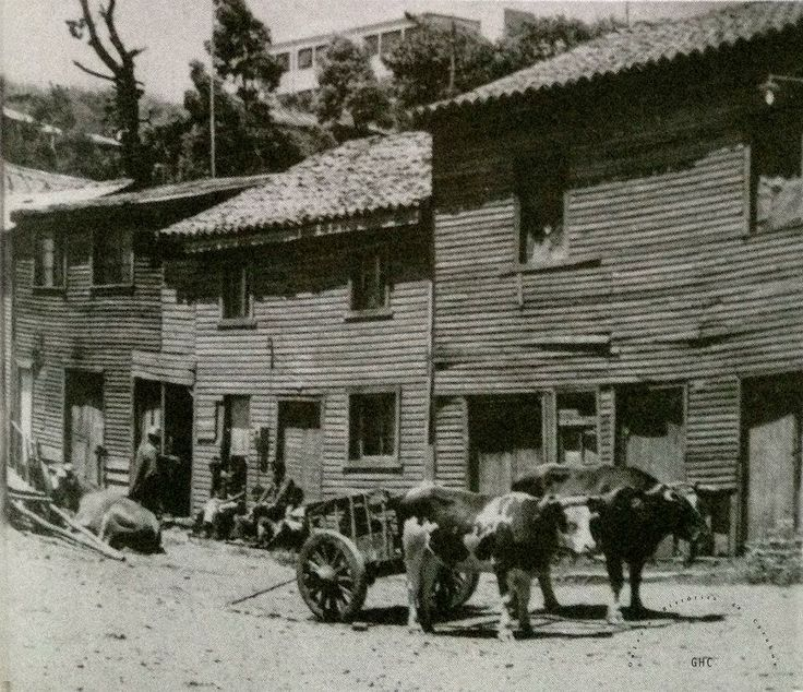 Galería Histórica de Carahue. Sociedad y Época:  Villa Damas hacia 1950.- Nótese la escuela ex-Darío Salas en la parte superior derecha.  #ghc #carahue #memoria #patrimoniofotografico