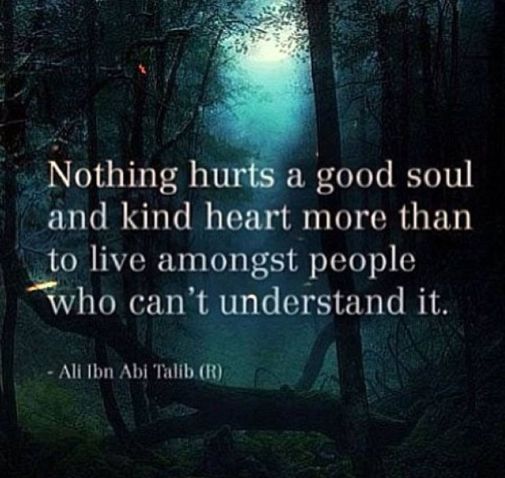 Nothing hurts a good soul and kind heart more than to live amongst people who dont understand it. - Imam Ali