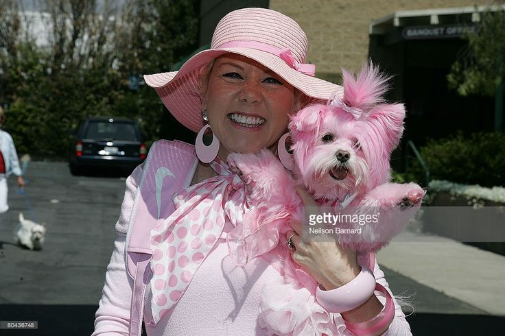Kitten Kay Sera and dog Kisses at the taping of the 100th episode of National Geographic Channel's 'Dog Whisperer' at Pickwick Gardens March 30, 2008 in Burbank, California.