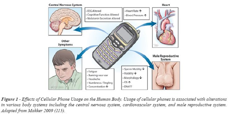 effects of cell phones on society essay A god of our society many people have come to rely on cell phones while there is a plus side to cell phones, the usage and reliability effects daily lives.