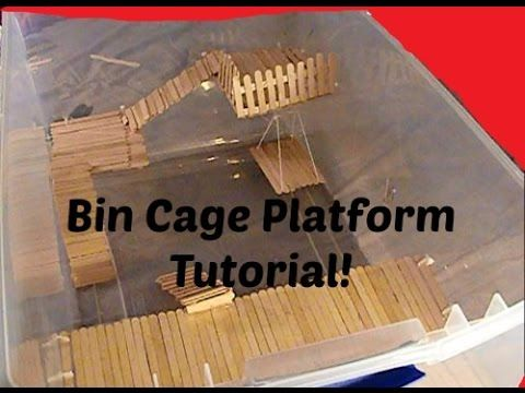 Bin Cage Platform Tutorial YouTube Animals and Nature