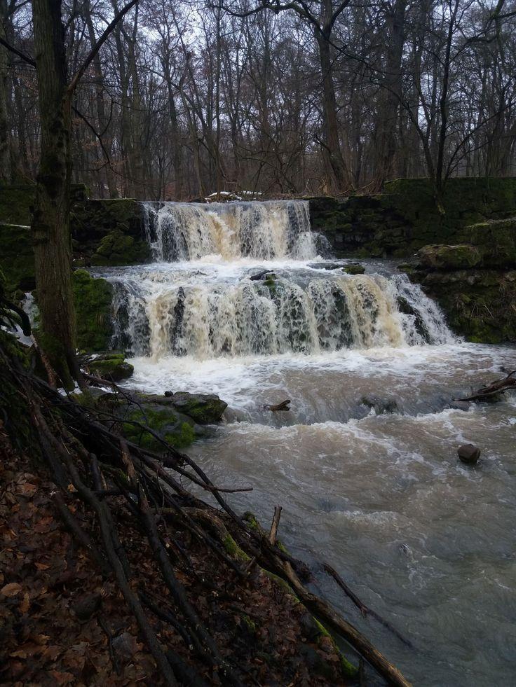 Ilyenkor látni a legszebb vízlépcsőket a pilisi erdőben