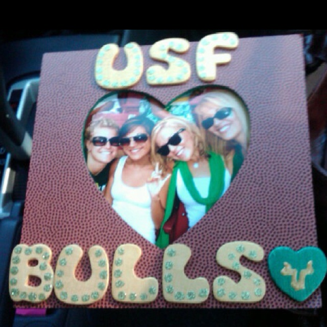 best usf bulls are we images blouses college  usf love this