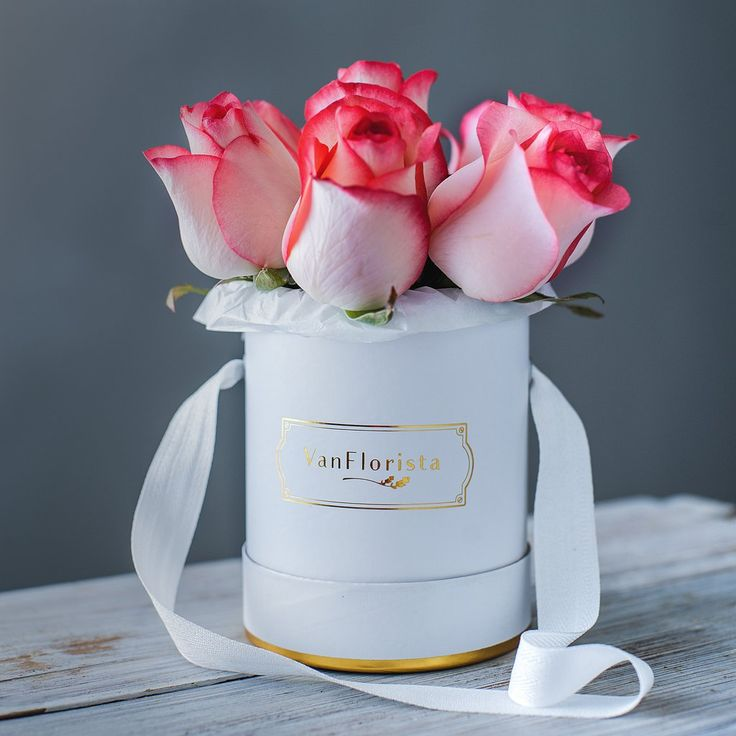 Pink Roses Basic