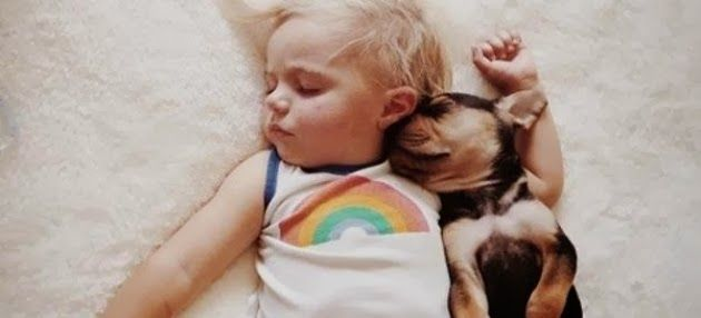Η ιστορία αγάπης ενός μωρού και ενός σκύλου