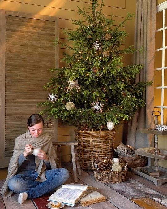 large wicker basket for tree.: Holiday, Christmas Time, Christmas Decor, Christmas Trees, Christmas Ideas