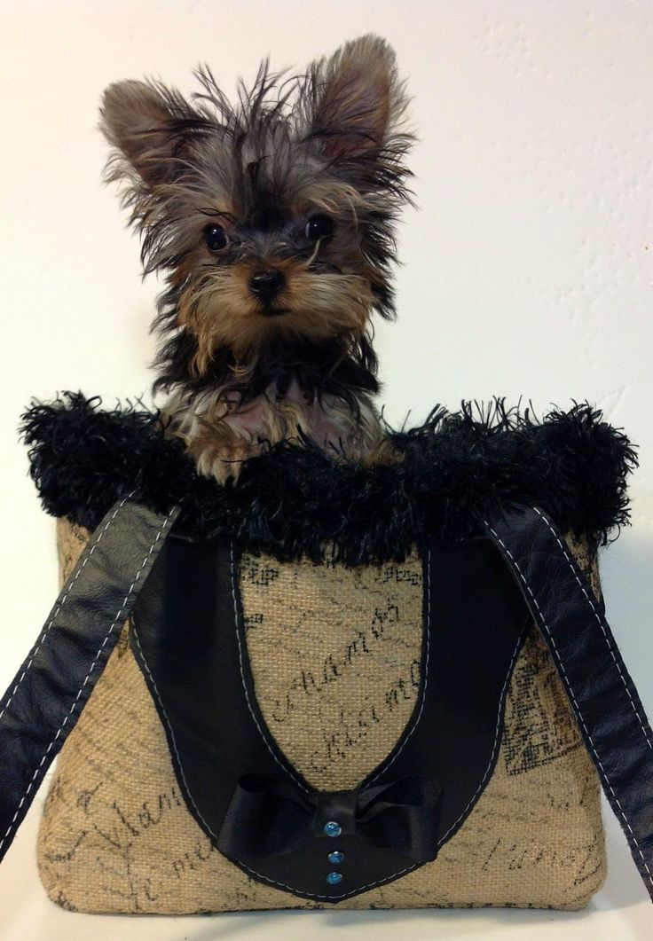 The Yorkshire Terrier makes this a beautiful bag!