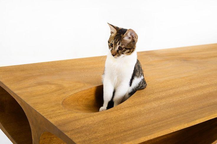 CATable, arredamento di design da condividere con il proprio gatto http://www.differentdesign.it/catable-arredamento-di-design-da-condividere-con-il-proprio-gatto/ Educare un #gatto a rispettare i propri spazi è difficile, se non impossibile. E allora, bisogna trovare un giusto compromesso...