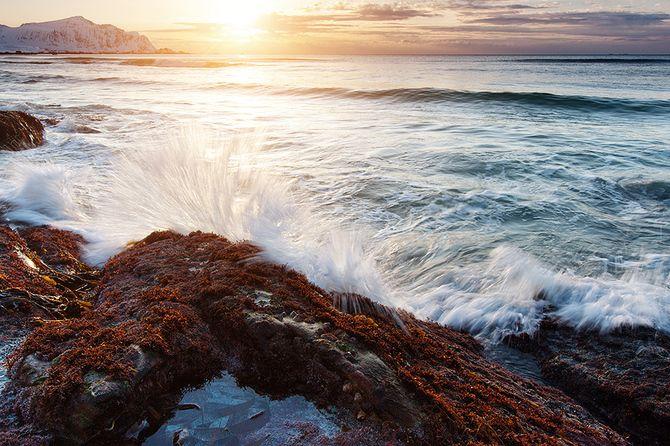 Лофотенские острова. Норвегия... Фотограф Jens Fersterra