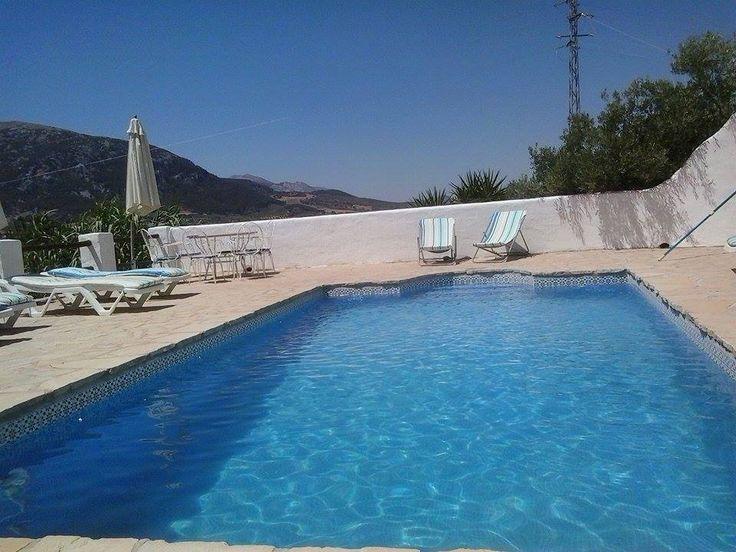 the beautiful heated pool