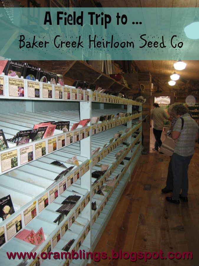 male wallets Baker Creek Heirloom Seeds Co  in Mansfield  MO only 8 hours away  I may need to take a trip