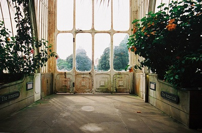 gorgeous windows: Green Houses, Window, Houses Doors, Interiors Design, Greenhouses, Kew Gardens, Sun Rooms, Green Rooms, Sunroom