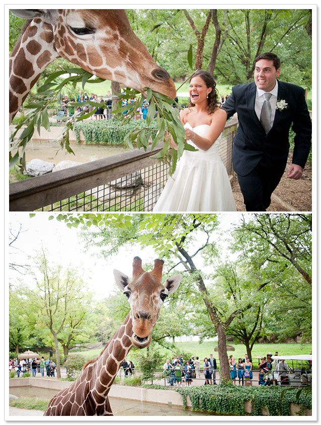 @Katie Schmeltzer Schmeltzer Gallaher  this will be your wedding one day!     {REAL COUPLE} DEB + DREW AT PHILADELPHIA ZOO