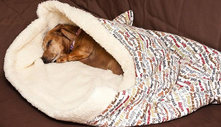 Puppy pockets! Best thing for dachshunds since they love to burrow.  I need to make one for Schuter!