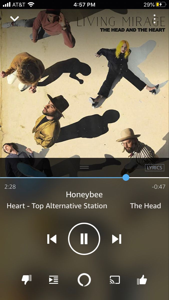 Honeybee The Head And The Heart In 2020 Spotify Music Songs Most Popular Artists