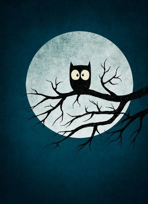 Uil op tak bij volle maan