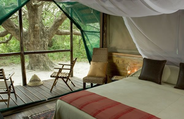 Go Glamping - 'Glamorous Camping'  Kosi Forest Lodge - Kosi Bay, Zululand See more https://goo.gl/hj5o65  Situated in the wilderness, Kosi Forest Lodge guests are accommodated in thatched bedrooms, on raised wooden decks, hidden in the sand forest.