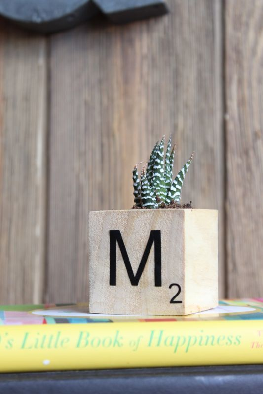 DIY may not be an official Scrabble word, but for this DIY planter project, it's a total game-winner.