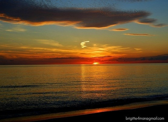 Naples, FLFavorite Places, Food, 25Th Anniversaries, My Heart, Beautiful Sunsets, Beach, Gulf Of Mexico, Families, Naples Florida Home