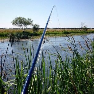 Flyfishing in Skjern river
