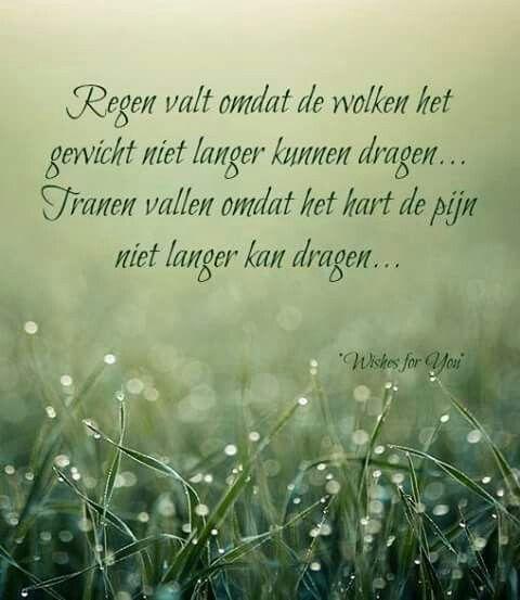 """""""Regen valt omdat de wolken het gewicht niet langer kunnen dragen... Tranen vallen omdat het hart de pijn niet langer kan dragen."""""""