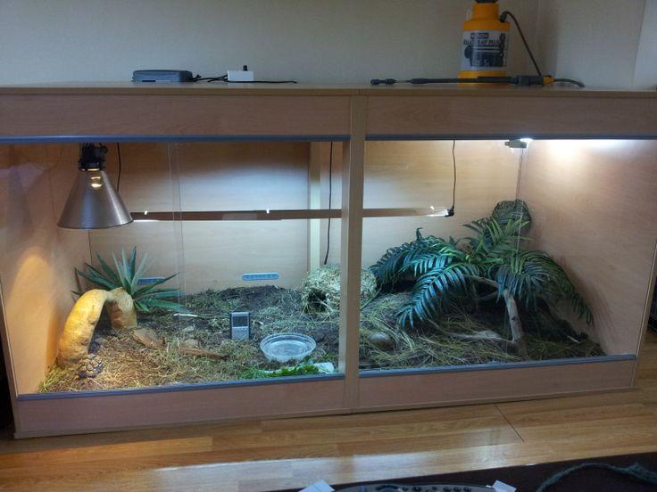 New indoor enclosure for my little leopard  Tortoise Forum  Paleo  Tortoise enclosure