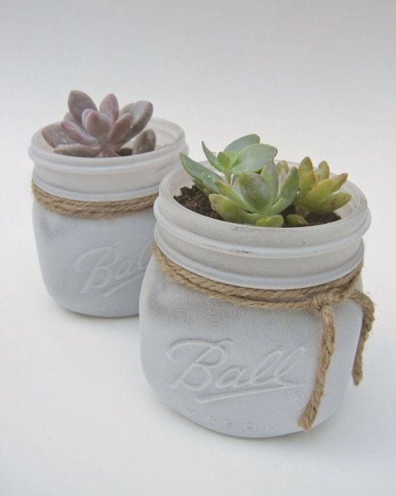 Hey, I found this really awesome Etsy listing at http://www.etsy.com/listing/158853773/large-4x-4-potted-succulent-in-white