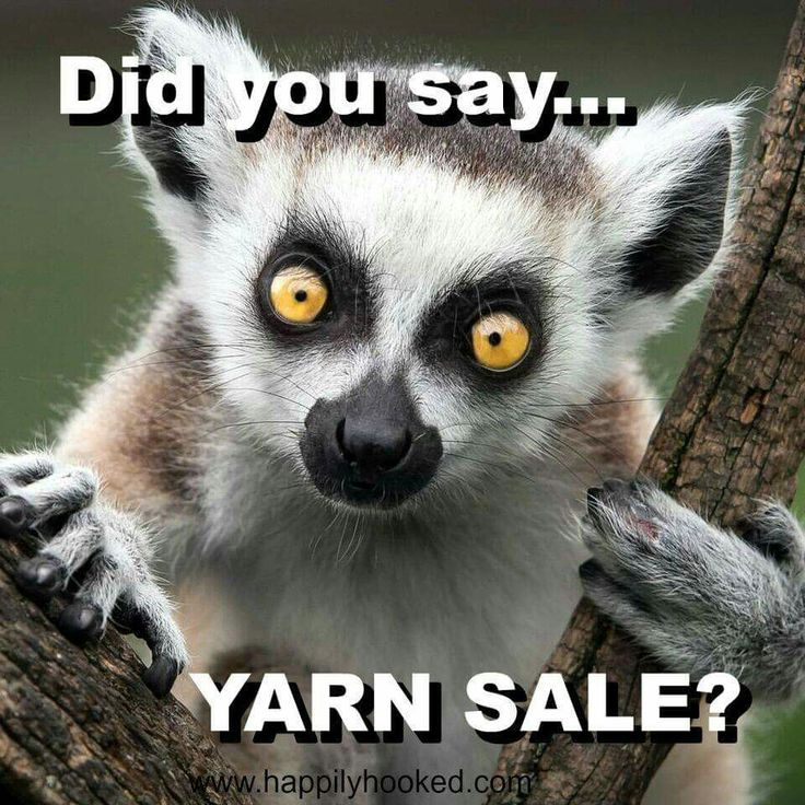 Ha! Pretty sure that's what I look like when I hear about a good yarn sale. LOL! =]
