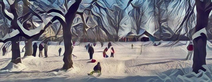 Nagyszebeni Erlen Park télen/ Parcul Sub Arini Sibiu, peisaj de iarnă. foto design fotor.com (c) TgY