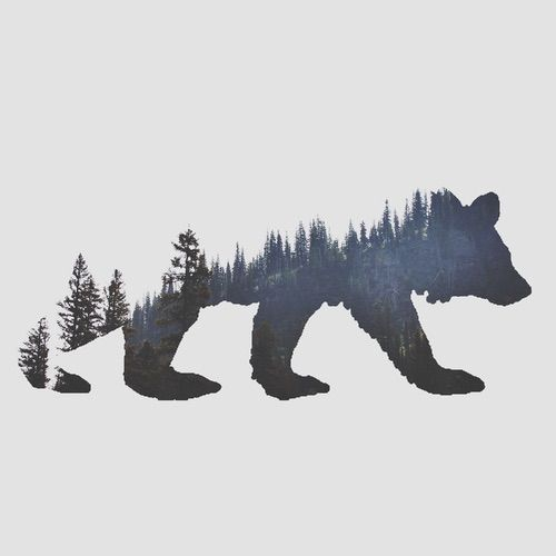 Image via We Heart It https://weheartit.com/entry/159835277 #adventure #bear #drawing #folk #forest #hiking #mountains #photography #pines #trees #wanderlust #woods