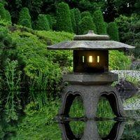 Zen — Pure oriental