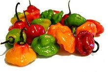 Spice of the day - Ají dulce, a chilli pepper with no heat at SHU Zero. I haven't seen this one yet to try it.