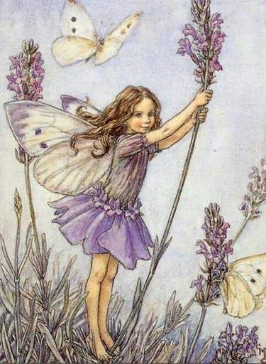 Cicely Mary Barker Lavender Fairy                              …