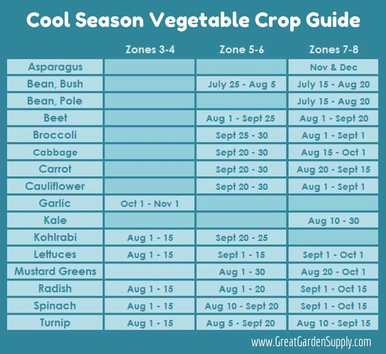 A handy guide for planting crops in the late summer depending on your Hardiness Zone: Zone 3-4 Fall Harvest Calendar, Zone 5-6 Fall Harvest Calendar, Zone 7-8 Fall Harvest Calendar #edibles #gardening