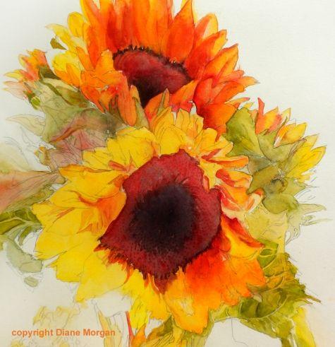 Sun Dance -- Diane Morgan