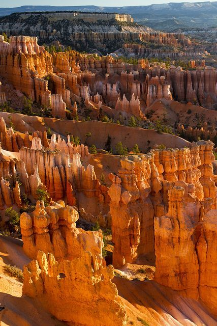 15 Most Beautiful National Parks in America | Fascinating Places To Travel