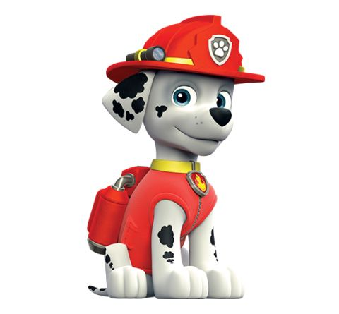 20 best images about paw patrol on Pinterest