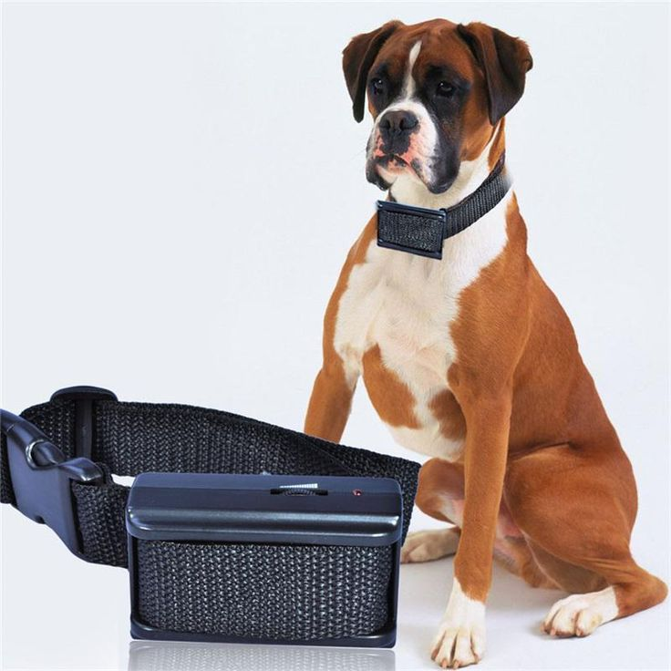 Electric Strap Collar Dog Water Resistant Anti Bark Collar