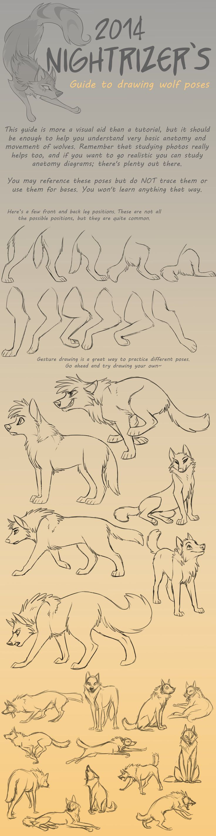 Guide to Drawing Wolf Poses by Nightrizer.deviantart.com on @deviantART: