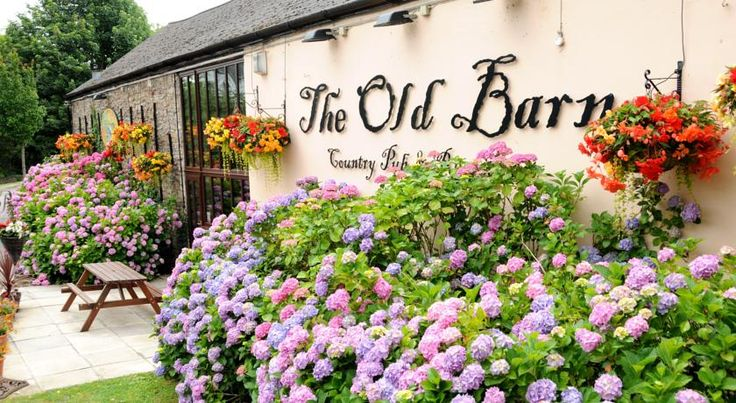The Old Barn Inn Newport This historic country inn has delicious food and luxury rooms. It is within a few km of the famous Celtic Manor Resort, home of the 2010 Ryder Cup.  The Old Barn Inn dates back to the early 1750s.